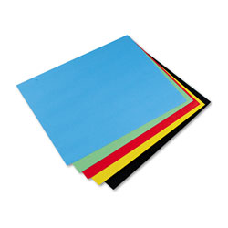 Riverside Paper Colored 4 Ply Poster Board, 22 x 28, 5 ...